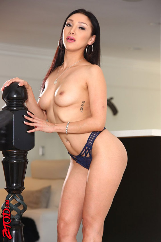 aktorka porno Vicki Chase